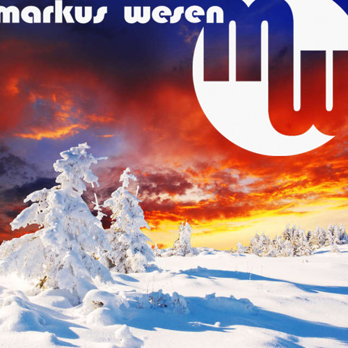 Markus Wesen - Konzentration auf das WESENtliche