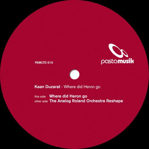 Kaan Duzarat - Where Did Heron Go (The Analog Roland Orchestra Reshape) (excerpt)