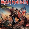 Iron Maiden-The Trooper(cover)