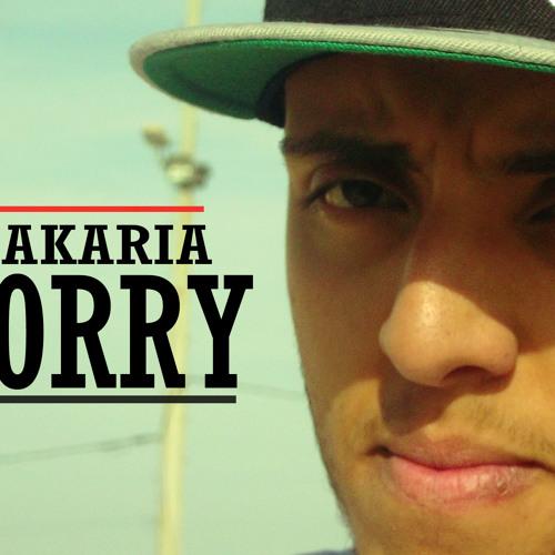 MESTER ZAKARIA-IM SORRY -For (NEW MAXI) 2013