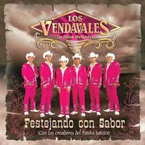 Los Vendavales - Mi Bella <3