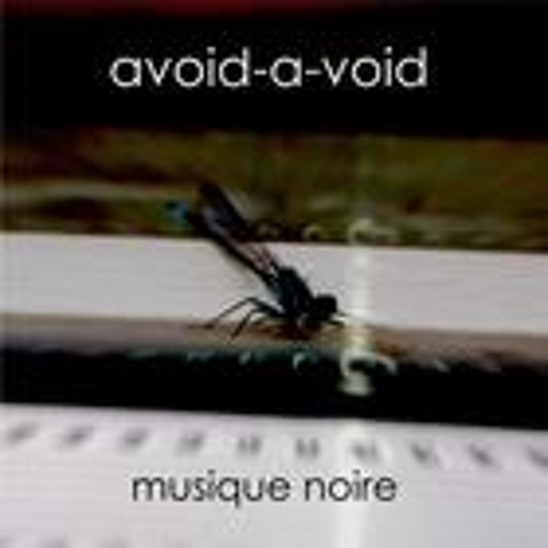 Avoid-A-Void - No View