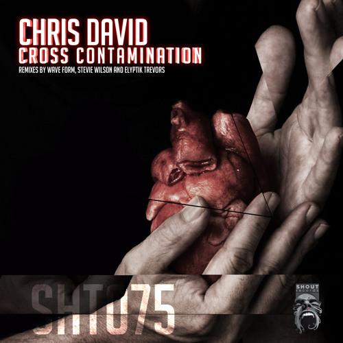 Chris David - Ultrasonic (Elyptik Trevors Remix)