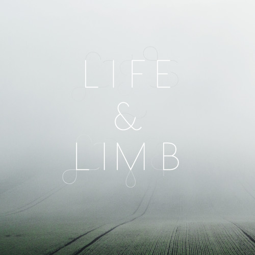 """LIFE & LIMB """"before the flame and the flood - Saroos remix"""""""