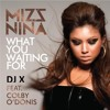 2012 Mizz Nina & Colby'O Donis - What You Waiting For (DJ X Remix)