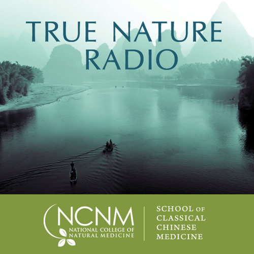 True Nature Radio: Chinese Medicine and the Symbolism of Dreams