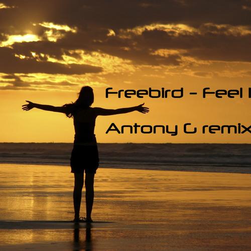 FreeBird - Feel It (Antony G remix) [free download]