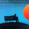 What you won't do for love - Bobby Cardwell [Ripping Ver.]
