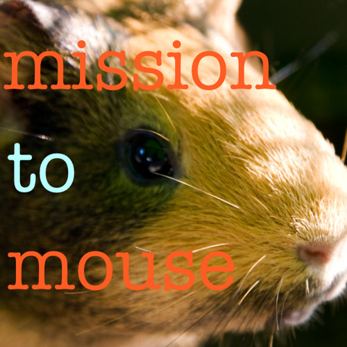 mission to mouse