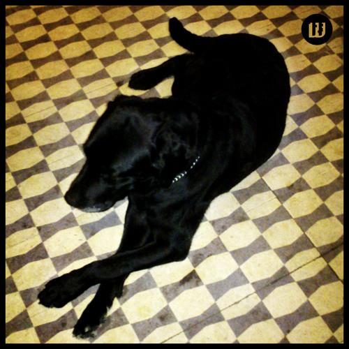 02 - J.Daniel - Change It - (Aqob Star Dust Remix)