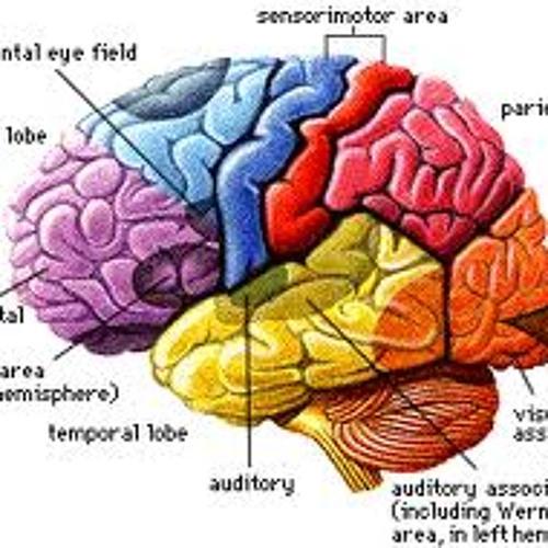 Brain Juice (TRAP/TRAPSTEP)