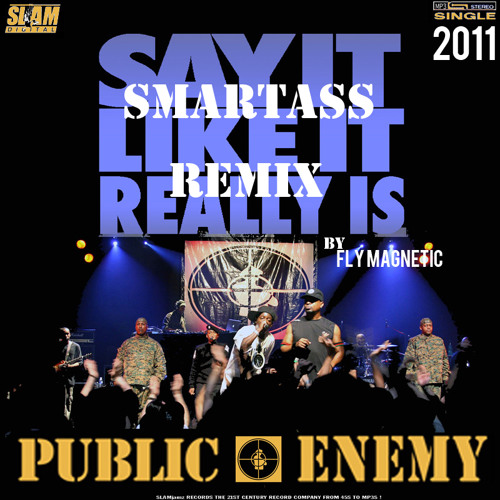 Public Enemy - Say It Like It Really  Is (Smartass Remix by Fly Magnetic)