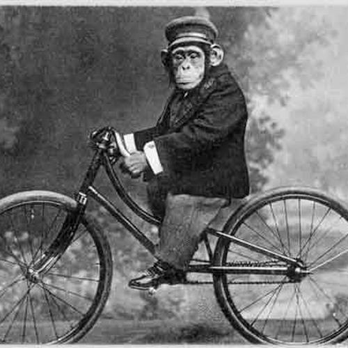 Ride yer bike.