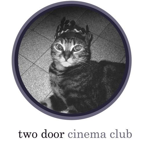 Two Door Cinema Club- Undercover Martyn (Cover)