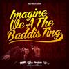 Download SAFARi SOUND - IMAGiNE Wi A THE BADDiS TiNG Mp3