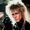 (David Bowie's Bulge In The Labyrinth) Priceless