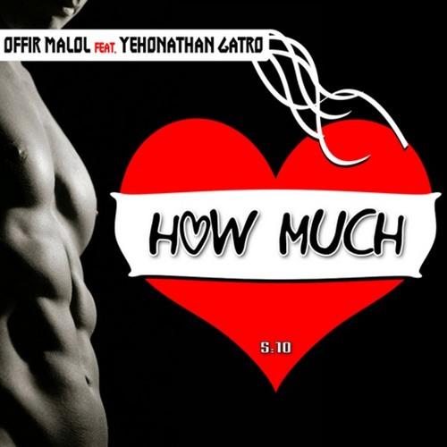 How Much (Offir Malol Remix)