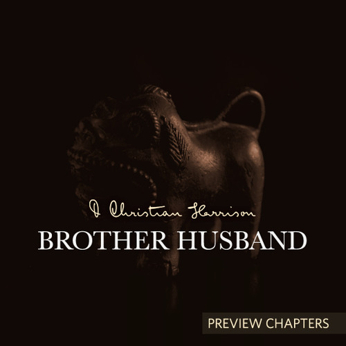 Brother Husband Preview | Chapter 3
