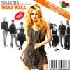 SHAKIRA - WAKA WAKA(MA€$TRO MARCELLIN coupe decale Droeb remix)