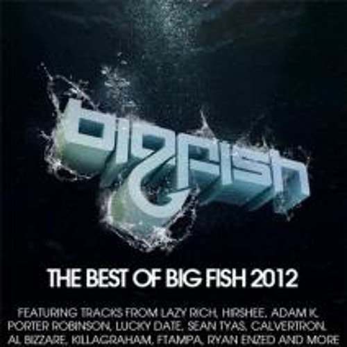 The Best of Big Fish 2012 Mixed By Zorastra