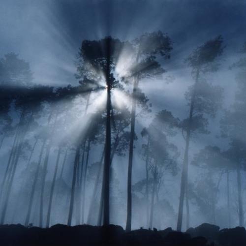 mystery-of-mist