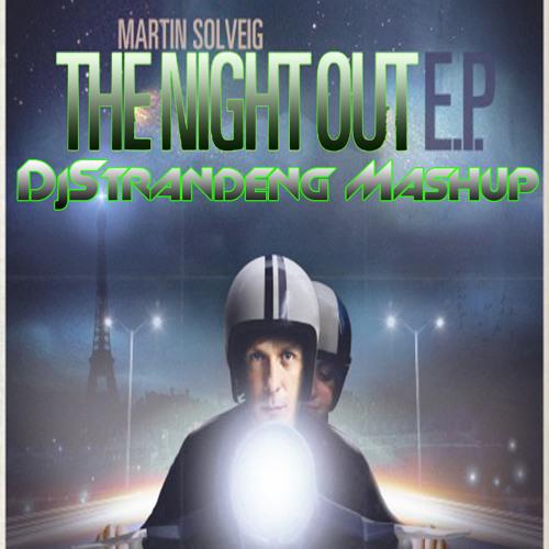 Martin Solveig - The night out (Djstrandeng mashup)