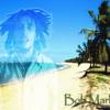 Best reggae mix ++new++