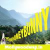Honey Bunny - Idea ADV. Full Song