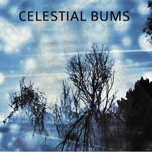 Celestial Bums -  The Starry Night
