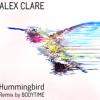 Alex Clare - Hummingbird [BODYTIME remix]