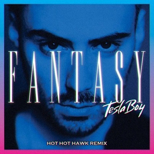 Tesla Boy - Fantasy (Hot Hot Hawk Remix) DL link in description