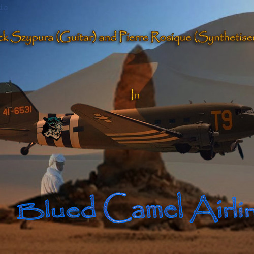 Blued Camel Airlines II