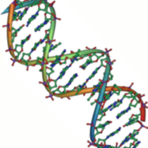 Linking Violence and Biology Through DNA