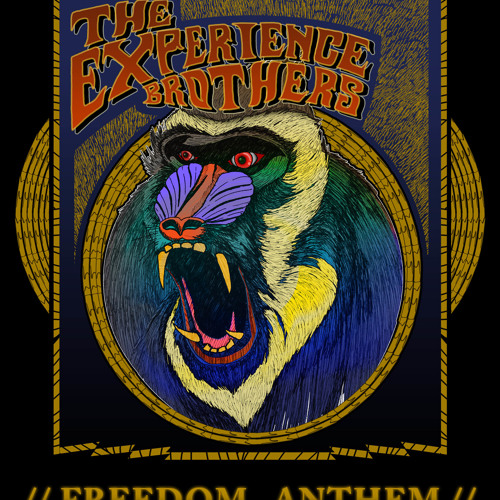 The Experience Brothers - Freedom Anthem (2012)