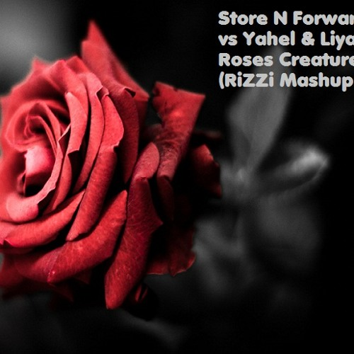 Store N Forward vs Yahel & Liya - Roses Creatures (RiZZi  Mashup)