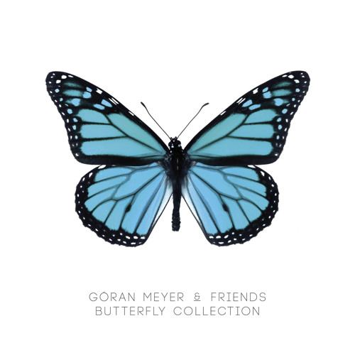 Göran Meyer - Butterfly (KAOTEE rmx) [OUT ON Balushi Records]