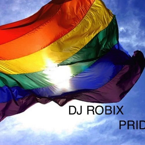 DJ ROBIX - PRIDE RIO 2012