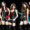 Kamen Rider Girls - Journey Through the Decade