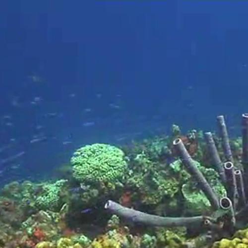 Underwater (Piano Theme)