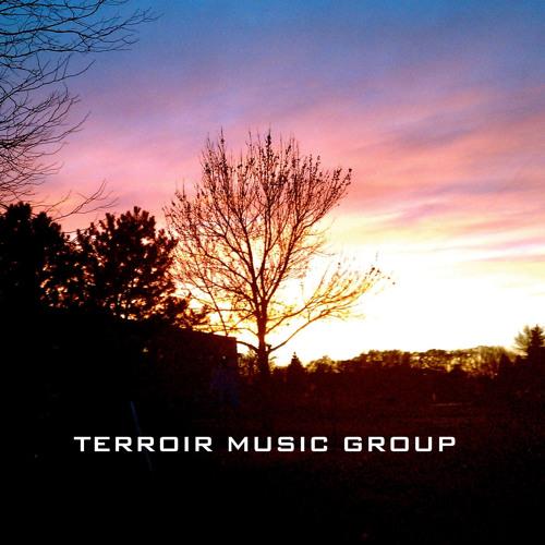 Terroir Music Group Demo