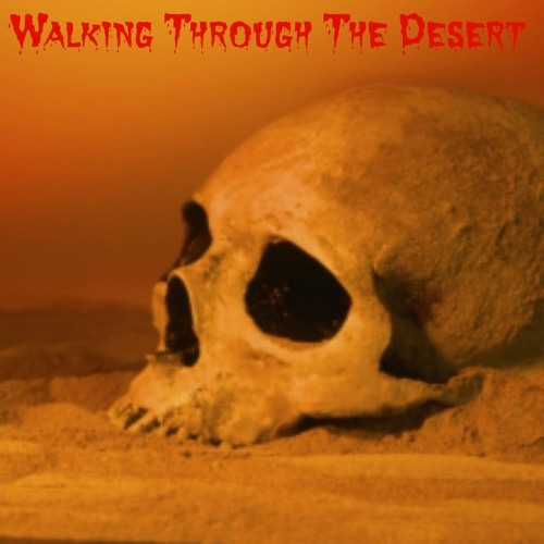 Scotty Shook Brad Shank - Walking Through The Desert 2013 *Free Download*