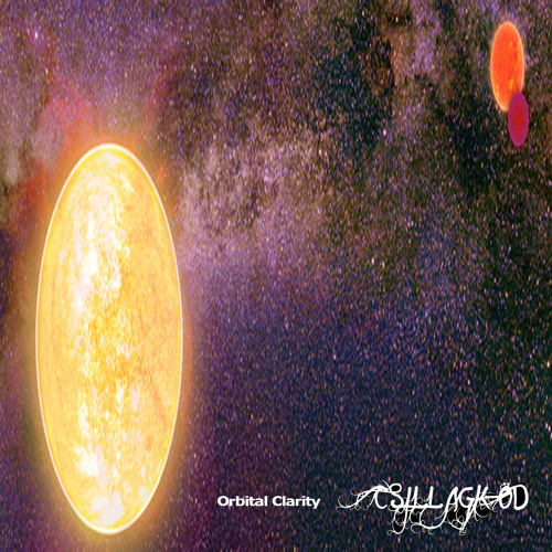 Cosmic Amplitudes