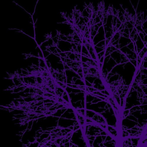 Tree Slap