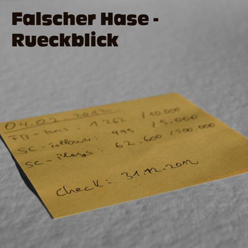 Falscher Hase - Rückblick (Dezember 2012)