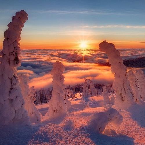 Aleksey Tsaplin - Winter