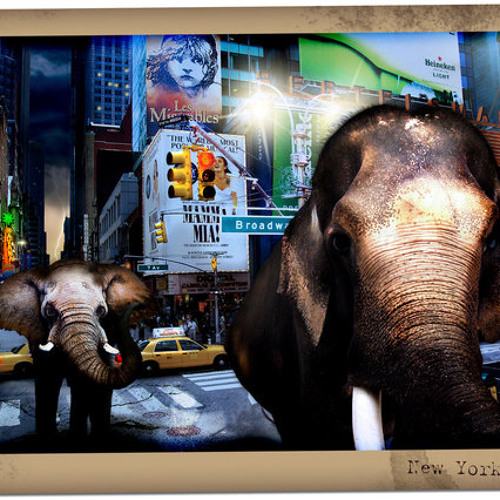 Elephants of New York