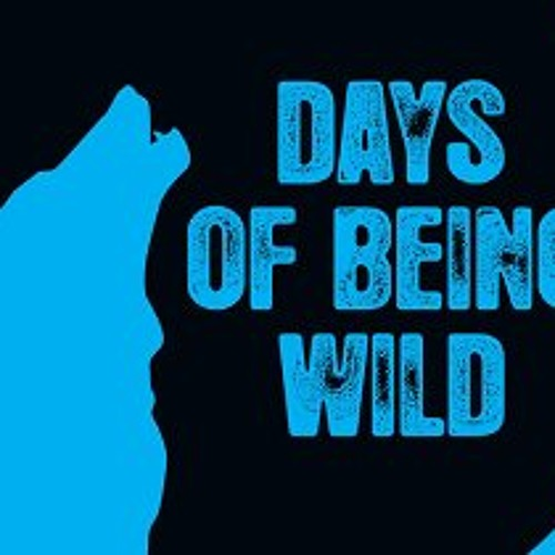 XY-Me - Fearless (Days Of Being Wild)