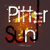 Maroon 5 - Moves Like Jagger (Pitter SunJ Remix) (Free Download)