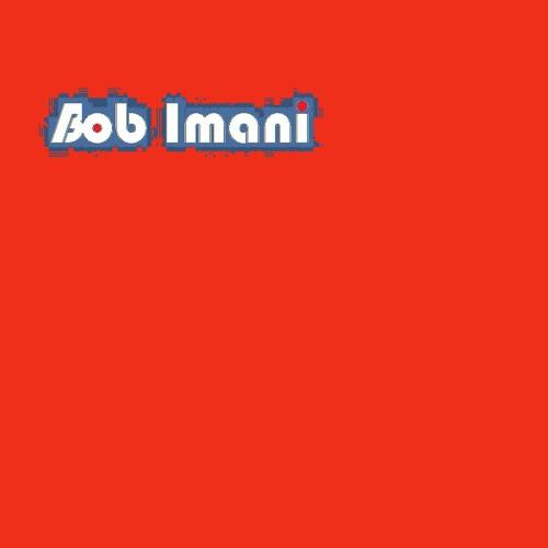 Amirali Masoumi ft. Babak Imani-Ghalbe Man (Remix)