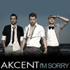 Akcent Feat. Sandra N - I'm Sorry (Simao Deejay Remix)